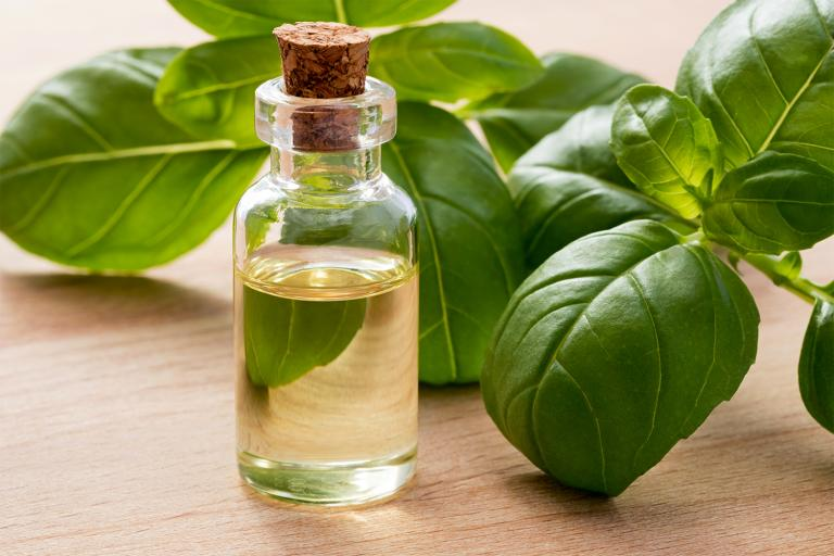 a bottle of basil oil surrounded by fresh herbs